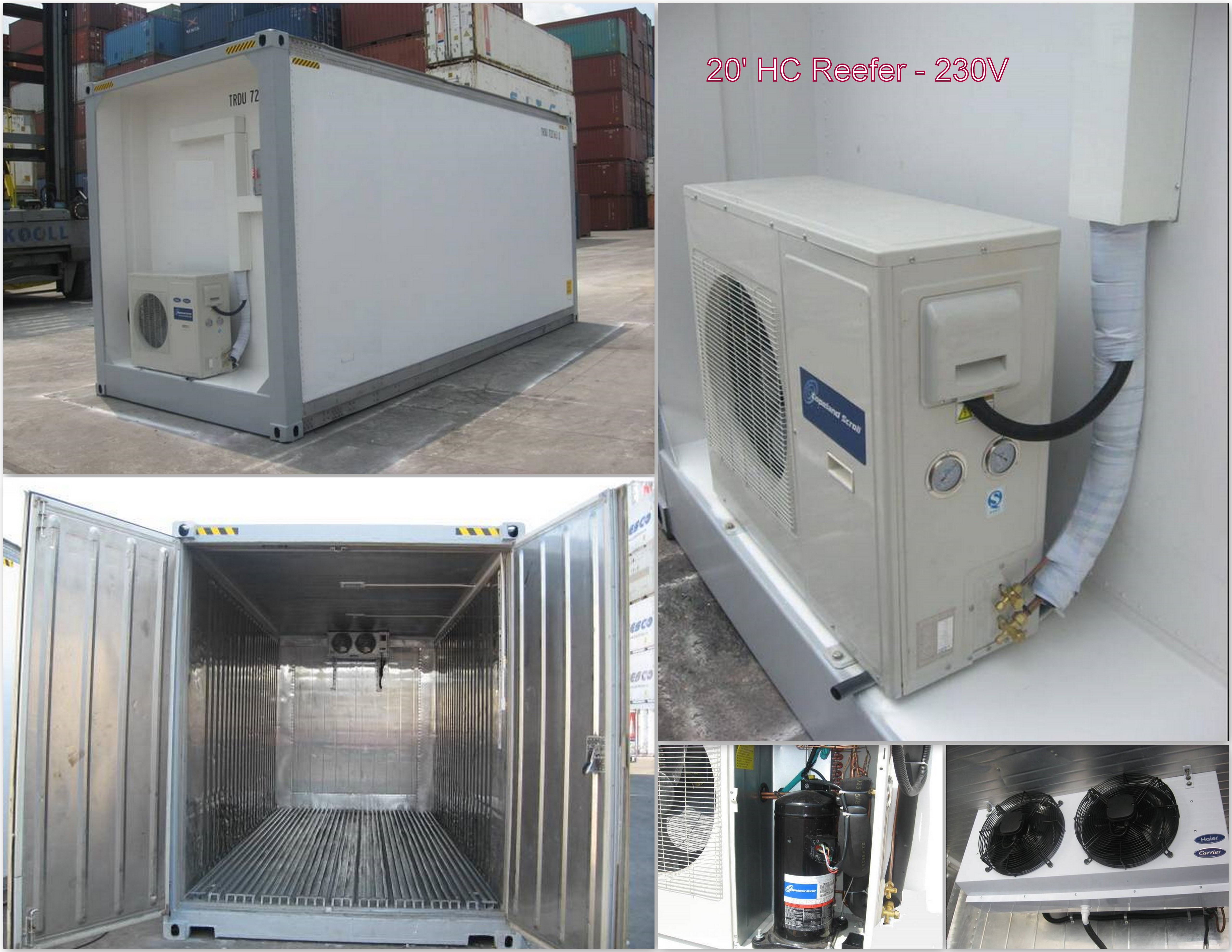 Reefer Containers Chassisking Com